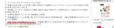 Sony_mhsts20k_2